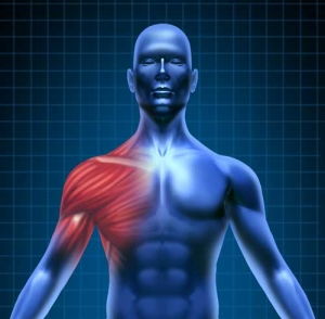 rotator cuff Hampton Roads