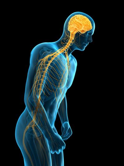 orthopedic spine surgeon HROSM Newport News va